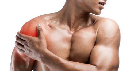 febra musculară